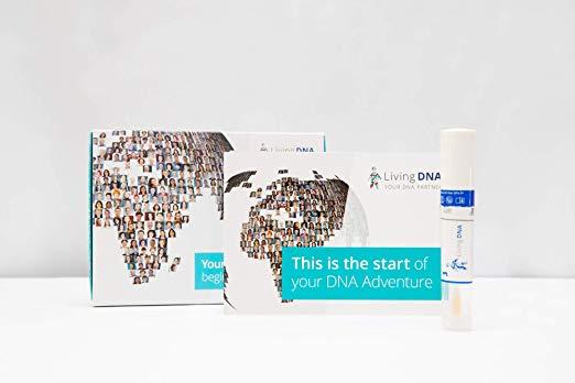The Best Ancestry DNA Test According to Reddit - ReddGuide